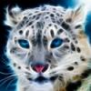 Smartphone avec stylet - dernier message par Panther42